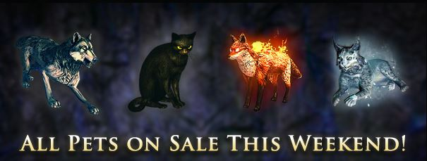 Photo of Path Of Exile Pet Microtransactions Weekend, All Pets On Sale