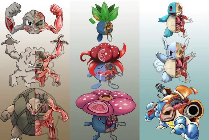 "Photo of 151 Pokemon ""Sliced and Diced"" Into Modern Biology, PokeNatomy is Real"