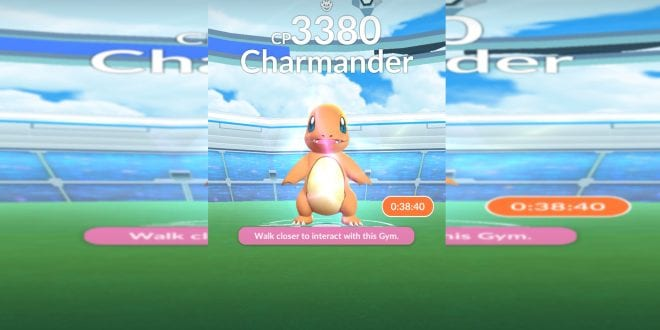 charmander soloed squirtle