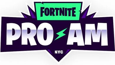 Photo of Fortnite World Cup PRO AM Tournament Standings