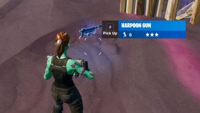 Photo of Fortnite Adds Harpoon Gun Without Noticing Anyone
