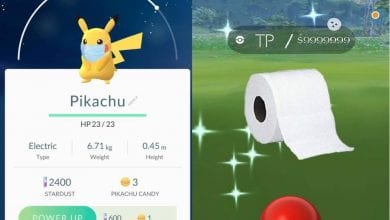 Photo of Pokemon Go Playing at Home, Hatching Eggs, Catching Shiny and Staying Safe
