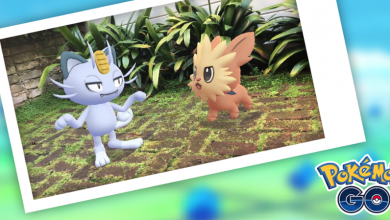 Photo of Pokemon Go Buddy Up Event Features and Bonuses